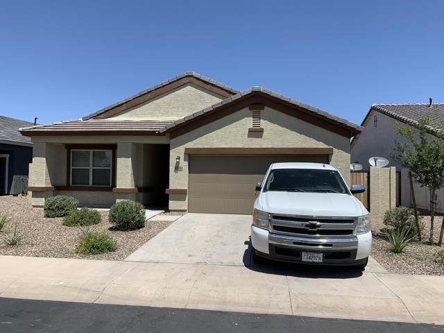 37308 W Cannataro Lane, Maricopa, AZ 85138 (MLS #6084904) :: Power Realty Group Model Home Center