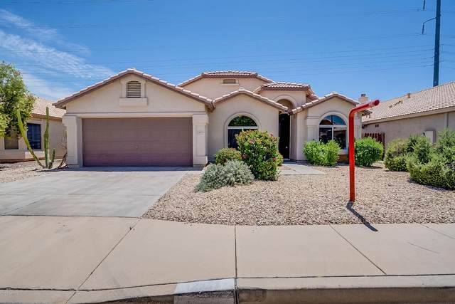 2011 E Renee Drive, Phoenix, AZ 85024 (MLS #6084907) :: My Home Group