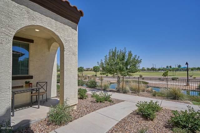 3683 E Dogwood Drive, Chandler, AZ 85286 (MLS #6084915) :: Yost Realty Group at RE/MAX Casa Grande
