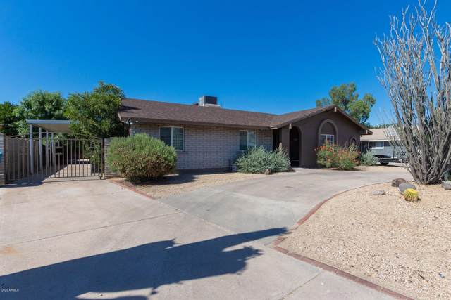 3640 W Cholla Street, Phoenix, AZ 85029 (MLS #6084923) :: My Home Group