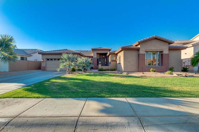 2092 W Enfield Way, Chandler, AZ 85286 (MLS #6085010) :: Lux Home Group at  Keller Williams Realty Phoenix