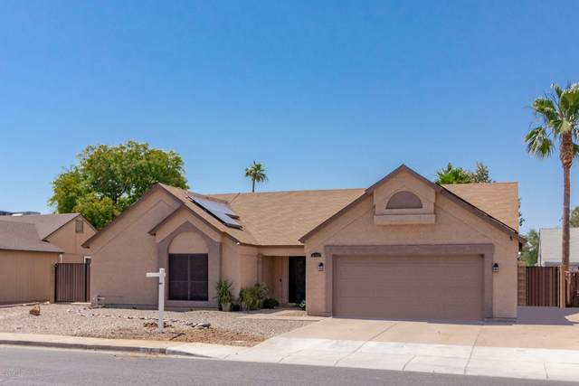 6141 W Ivanhoe Street, Chandler, AZ 85226 (MLS #6085070) :: The Everest Team at eXp Realty