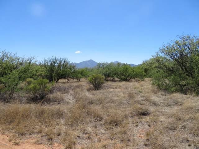 TBD Mellak Road, Hereford, AZ 85615 (MLS #6085086) :: The Bill and Cindy Flowers Team