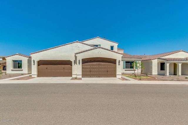 14200 W Village Parkway #2135, Litchfield Park, AZ 85340 (MLS #6085111) :: Riddle Realty Group - Keller Williams Arizona Realty