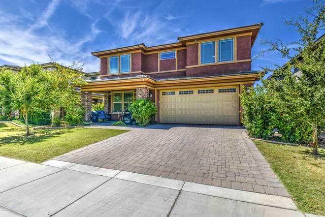 4231 E Amber Lane, Gilbert, AZ 85296 (MLS #6085117) :: Conway Real Estate