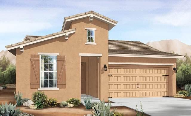 16818 W Beth Drive, Goodyear, AZ 85338 (MLS #6085124) :: The Daniel Montez Real Estate Group