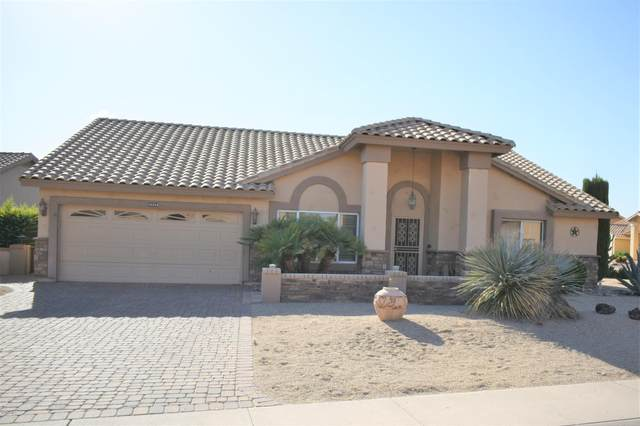 19760 N 94TH Avenue, Peoria, AZ 85382 (MLS #6085130) :: The Everest Team at eXp Realty