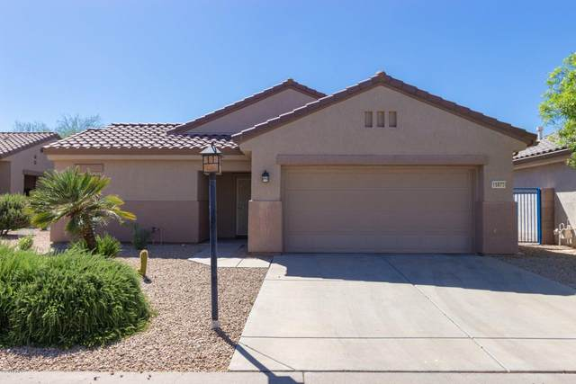 15879 N Remington Drive, Surprise, AZ 85374 (#6085143) :: The Josh Berkley Team