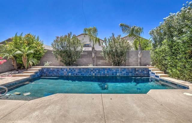 1255 W Desert Valley Drive, San Tan Valley, AZ 85143 (MLS #6085162) :: Sheli Stoddart Team | M.A.Z. Realty Professionals