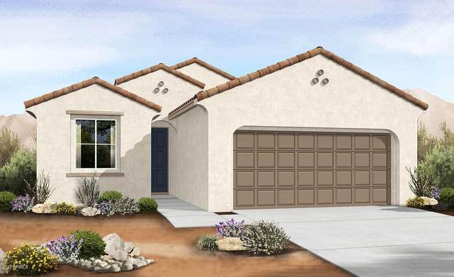 1549 E Kingman Place, Casa Grande, AZ 85122 (MLS #6085178) :: Homehelper Consultants