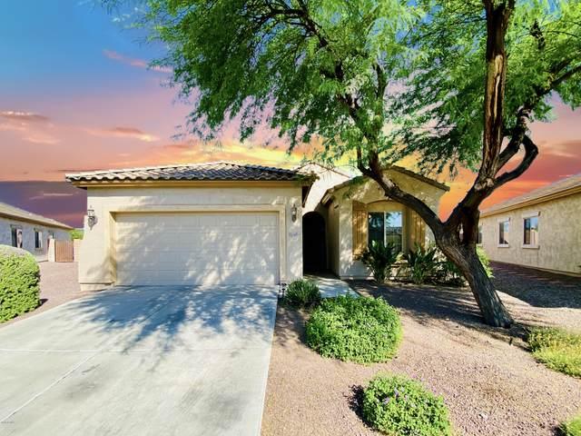 11102 E Sutter Avenue, Mesa, AZ 85212 (MLS #6085182) :: The Bill and Cindy Flowers Team