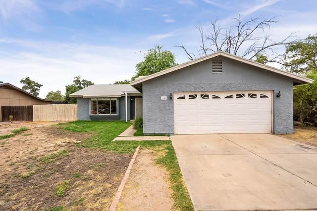 38 W Hillview Street, Mesa, AZ 85201 (MLS #6085190) :: The W Group