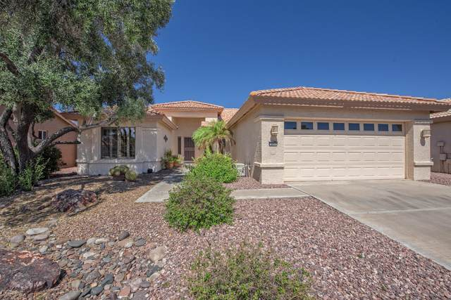 3254 N 147TH Lane, Goodyear, AZ 85395 (MLS #6085255) :: My Home Group