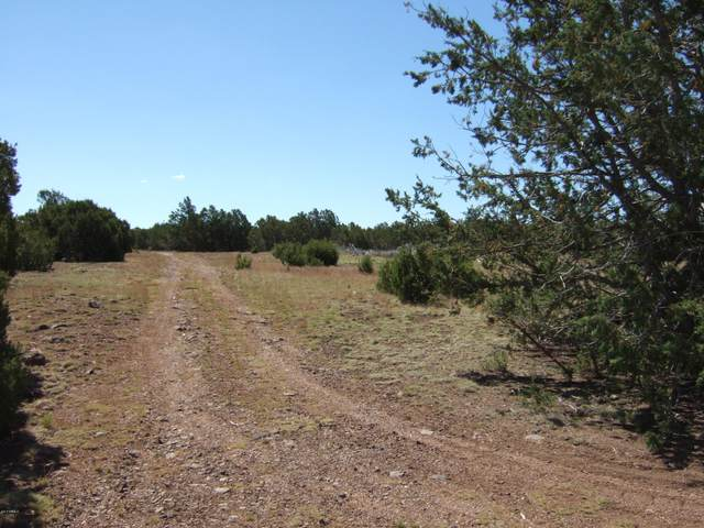 8413 N Apache County Road, Vernon, AZ 85940 (MLS #6085279) :: Yost Realty Group at RE/MAX Casa Grande