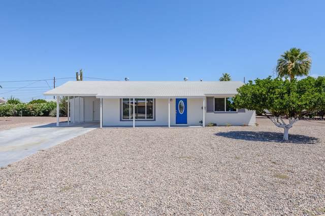 12053 N Saint Annes Drive, Sun City, AZ 85351 (MLS #6085302) :: Homehelper Consultants