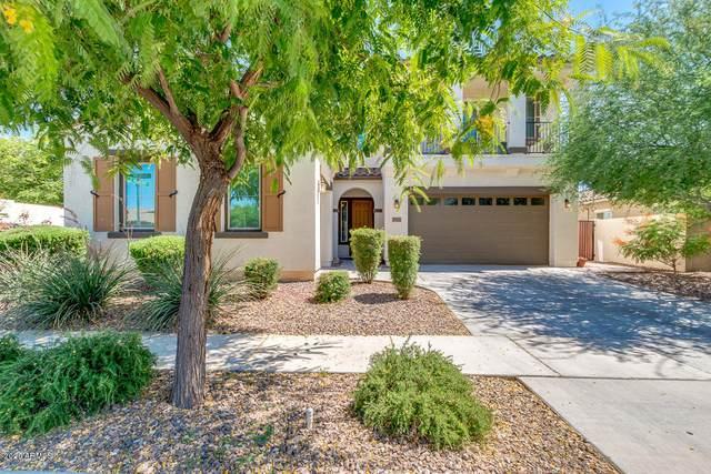3561 E Harrison Street, Gilbert, AZ 85295 (MLS #6085324) :: Klaus Team Real Estate Solutions