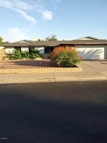 1311 W Pecos Avenue, Mesa, AZ 85202 (MLS #6085328) :: Klaus Team Real Estate Solutions