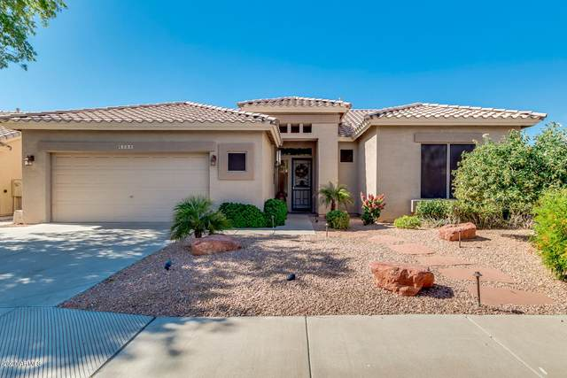 4266 E Cassia Lane, Gilbert, AZ 85298 (MLS #6085357) :: The Property Partners at eXp Realty