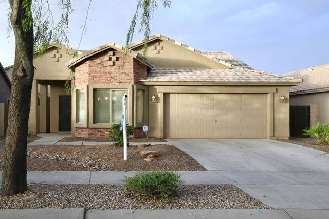 21220 E Via Del Palo, Queen Creek, AZ 85142 (MLS #6085386) :: Power Realty Group Model Home Center