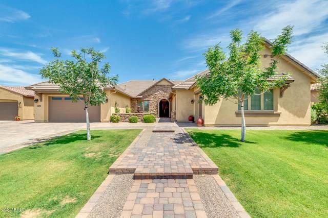 1280 E Via Nicola, San Tan Valley, AZ 85140 (MLS #6085394) :: Power Realty Group Model Home Center