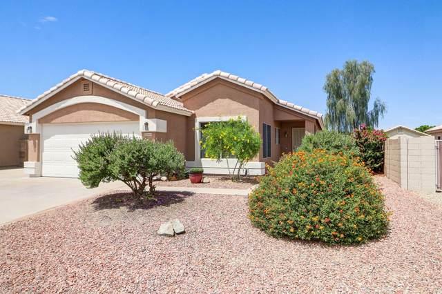 24614 N 38TH Drive, Glendale, AZ 85310 (MLS #6085400) :: Brett Tanner Home Selling Team