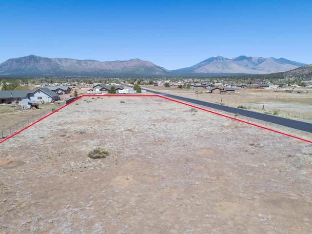 8469 N Lookout View Trail, Flagstaff, AZ 86004 (MLS #6085425) :: Klaus Team Real Estate Solutions