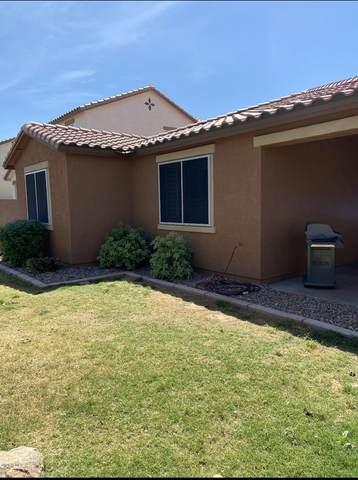 7866 E Baltimore Street, Mesa, AZ 85207 (MLS #6085467) :: Revelation Real Estate