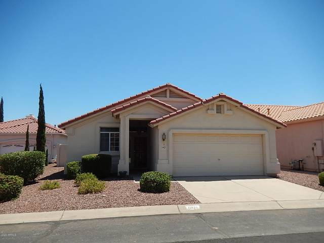 11671 W Catclaw Court, Surprise, AZ 85378 (MLS #6085499) :: Conway Real Estate