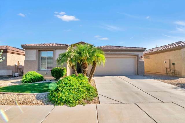 4702 E Blue Spruce Lane, Gilbert, AZ 85298 (MLS #6085534) :: Power Realty Group Model Home Center