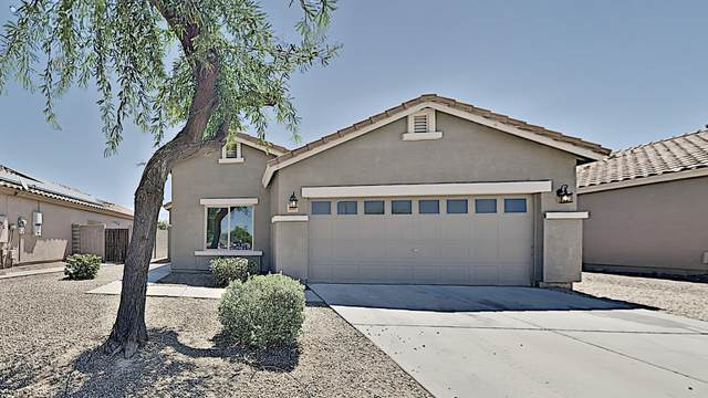1101 S 4TH Avenue, Avondale, AZ 85323 (MLS #6085537) :: Lifestyle Partners Team