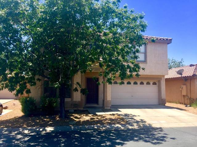 1573 S Halsted Drive, Chandler, AZ 85286 (MLS #6085570) :: Lifestyle Partners Team