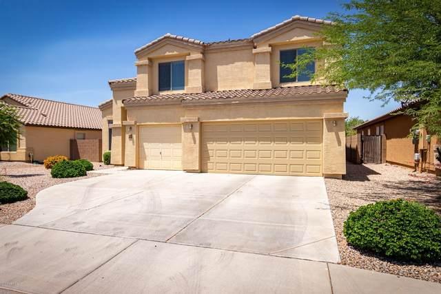 36934 W Leonessa Avenue, Maricopa, AZ 85138 (MLS #6085578) :: Power Realty Group Model Home Center