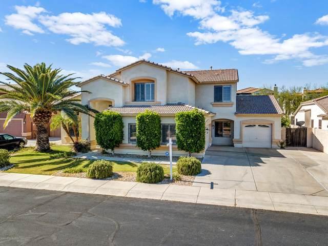 8143 W Crocus Drive, Peoria, AZ 85381 (MLS #6085594) :: Brett Tanner Home Selling Team