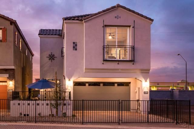 264 E Azalea Drive, Chandler, AZ 85286 (MLS #6085619) :: My Home Group