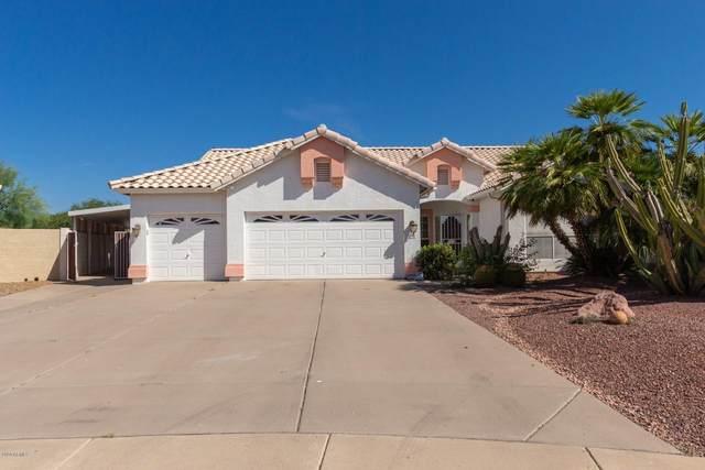 3326 E Renee Drive, Phoenix, AZ 85050 (MLS #6085640) :: The Laughton Team