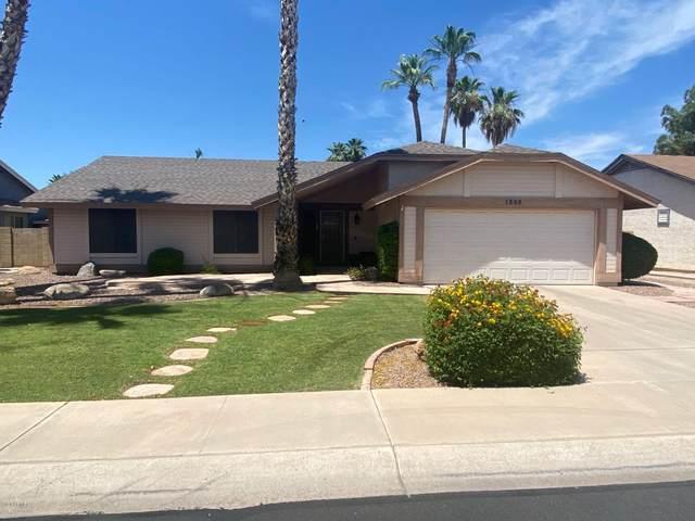 1866 W Calle Del Norte Street, Chandler, AZ 85224 (MLS #6085677) :: Klaus Team Real Estate Solutions