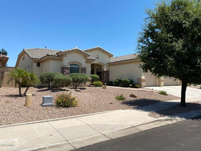 4609 S Ranger Court, Gilbert, AZ 85297 (MLS #6085686) :: Power Realty Group Model Home Center