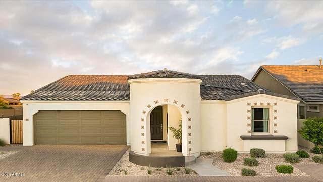 22537 S 225th Way, Queen Creek, AZ 85142 (MLS #6085691) :: Power Realty Group Model Home Center