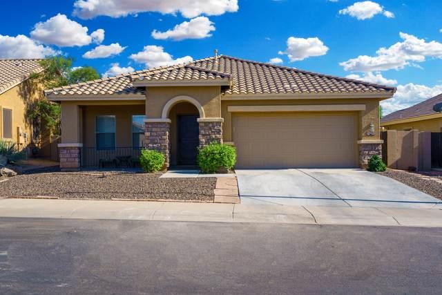 11531 E Sylvan Avenue, Mesa, AZ 85212 (MLS #6085707) :: Lifestyle Partners Team
