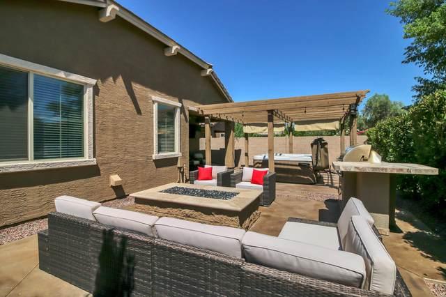 3254 E Dogwood Place, Chandler, AZ 85286 (MLS #6085711) :: Lucido Agency
