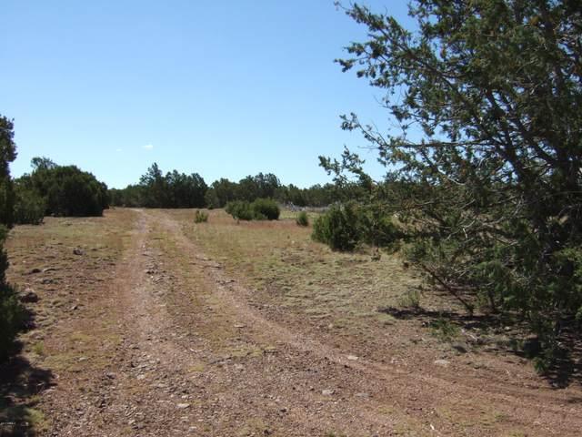 8413 N Apache County Road, Vernon, AZ 85940 (MLS #6085744) :: Yost Realty Group at RE/MAX Casa Grande