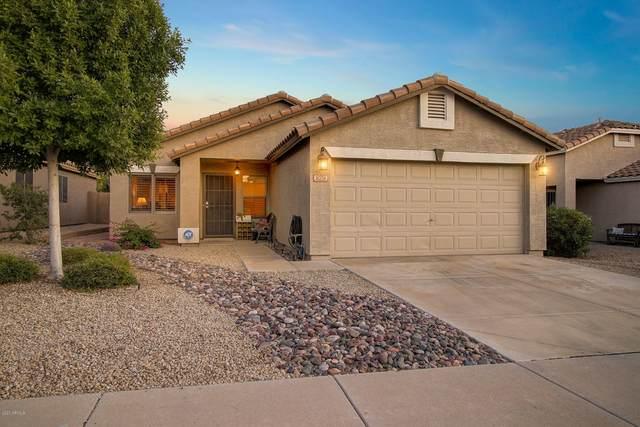 829 E Potter Drive, Phoenix, AZ 85024 (MLS #6085780) :: Nate Martinez Team