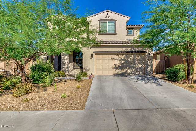 10833 S 174TH Avenue, Goodyear, AZ 85338 (MLS #6085849) :: Conway Real Estate