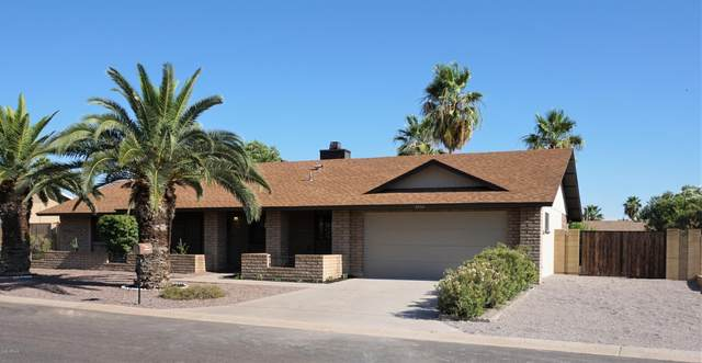 6033 E Hillview Street, Mesa, AZ 85205 (MLS #6085855) :: Lux Home Group at  Keller Williams Realty Phoenix