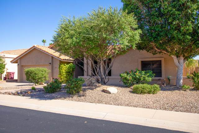 9827 E Sutton Drive, Scottsdale, AZ 85260 (MLS #6085869) :: Power Realty Group Model Home Center