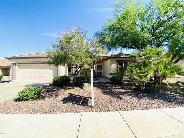 3560 E Torrey Pines Lane, Chandler, AZ 85249 (MLS #6085933) :: Lucido Agency