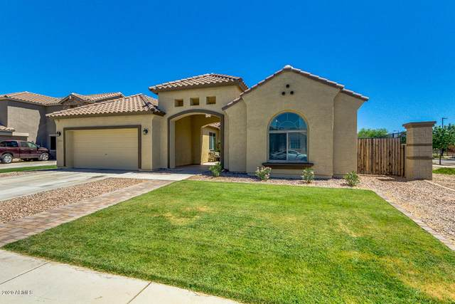 21405 E Roundup Way, Queen Creek, AZ 85142 (MLS #6085939) :: The C4 Group