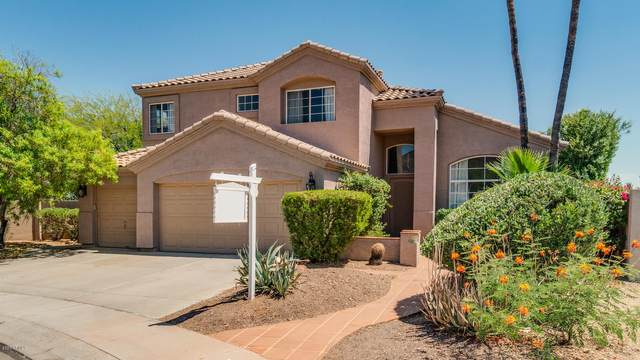 1601 W South Fork Drive, Phoenix, AZ 85045 (MLS #6085942) :: Openshaw Real Estate Group in partnership with The Jesse Herfel Real Estate Group