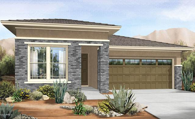 29826 N 115TH Glen, Peoria, AZ 85383 (MLS #6085955) :: Dijkstra & Co.