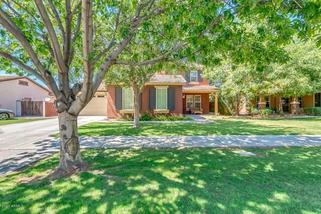 3668 E Morrison Ranch Parkway, Gilbert, AZ 85296 (MLS #6085970) :: Klaus Team Real Estate Solutions